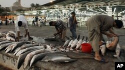Protecting Endangered Marine Species