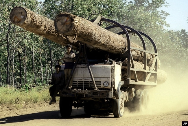 A truck carries logs in Preah Vihear province, 245 kilometers north of Phnom Penh, Cambodia.