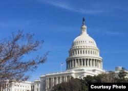 The U.S. Capitol Building as seen Feb., 5, 2019. (photo: Diaa Bekheet)