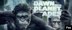 طلوع سیاره میمون ها - ۲۰۱۴