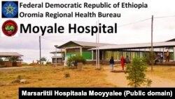 Hospitaala Mooyyalee