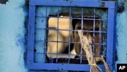 Seorang tahanan melihat dari balik jendela berjeruji di penjara Kandahar, Afghanistan (Foto: dok).