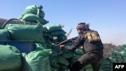 跟伊拉克政府军并肩作战的部落组织士兵在拉马迪与伊斯兰国作战。(资料照片)