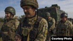Разведение сил в Петровском и Золотом