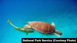 Moçambique reabilita Parque Nacional de Arquipélago de Bazaruto