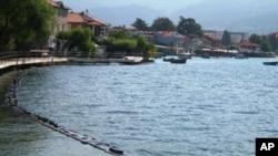 Охридска јагула за Гинис