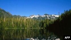 Olimpik, parku kombëtar amerikan në brigjet e Paqësorit