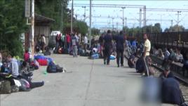 Pritja e imigrantëve në kufirin maqedonas