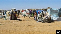 Drought-hit families set up makeshift structures in Garowe town, the capital city of Somalia's semiautonomous region of Puntland, February 2, 2011