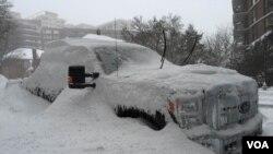 ارتفاع برف در بسیاری مناطق واشنگتن دی سی از ۶۰ سانتی متر بیشتر می باشد.