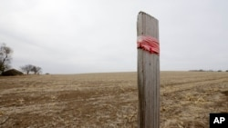 FILE - A stake in the ground wrapped with tape marks the route of the Keystone XL pipeline in Tilden, Nebraska, March 2014.