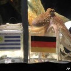 Ο Πώλ διαλέγει την Γερμανία έναντι της Ουρουγουάης