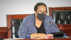 Vice-governadora Maiza Tavares