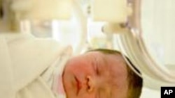 นักวิจัยพบว่าทารกแรกเกิดที่มีระดับวิตามินดีในร่างกายต่ำ เสี่ยงต่อการติดเชื้อในระบบทางเดินหายใจ