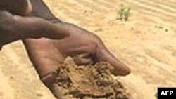 Oxfam cảnh báo nạn hạn hán trầm trọng ở Phi Châu