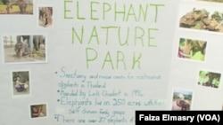 Miriam Gardsbane's sign about Elephant Nature Park