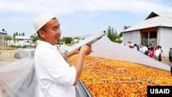 New fruit drying equipment in Kyrgyzstan