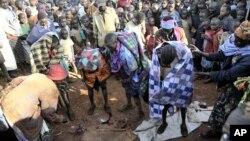 Rassemblement public autour d'un groupe d'adolescentes de la tribu Sebeï, juste après leur excision à Bukwa, Ouganda.