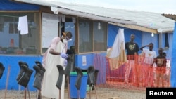 Ebola Update Show January 28 2015