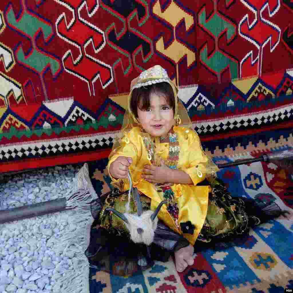 گلیم باف هنرمند کوچک قشقایی فیروزآباد فارس عکس: هادی (ارسالی شما)
