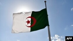 Drapeau de l'Algérie (AFP PHOTO / RYAD KRAMDI)