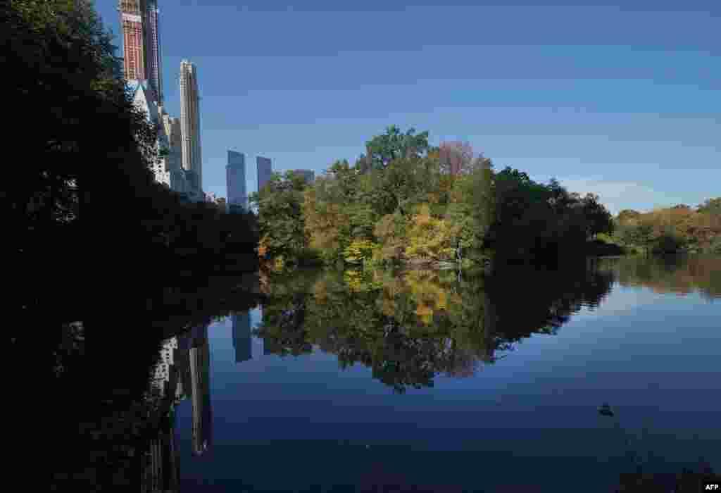 نمایی از برکه سنترال پارک نیویورک