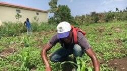 Governo são-tomense vai retomar terras improdutivas