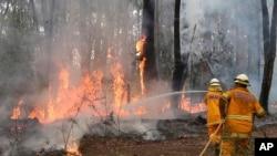 Petugas pemadam kebakaran mencoba mengendalikan kobaran api dekat perumahan di Bilpin, 75 kilometer dari barat Sydney, Australia (22/10). (AP/Rob Griffith)