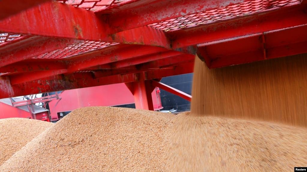 2018年4月4日,在中國江蘇南通的一個港口進口的大豆。 中國對美國增加關稅的商品以農產品和汽車為主,包括大豆。