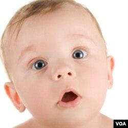 Meski belum bisa bicara, bayi sudah mengenal kata-kata dan menghubungkannya dengan benda-benda.