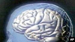 Za sportaše i druge: jednostavno testiranje na mogući potres mozga