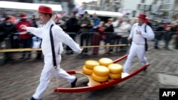 کشاورزان هلندی در یک جشنواره پنیرهای مرغوب.