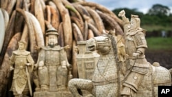 FILE - Confiscated ivory statues stand in front of one of around a dozen pyres of ivory, in Nairobi National Park, Kenya, April 28, 2016. A leading elephant conservation group said Wednesday, March 29, 2017 that the price of ivory in China has dropped as the country moves toward a ban on the legal trade of ivory this year.