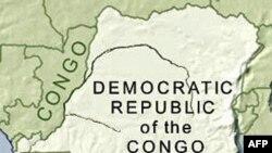 Tai nạn máy bay, 1 cố vấn cao cấp của Tổng thống Congo thiệt mạng