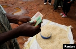 A trader counts money as he sells maize near the capital Lilongwe, Malawi, Feb. 1, 2016.