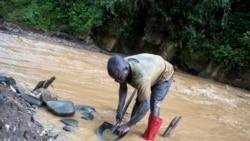 Sikasso: Kajolo Daman Da Sanu Bɔ Mankan