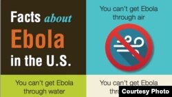 海报说明埃博拉的传染途径(DCD poster)
