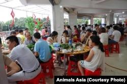 玉林狗肉节上捂着脸吃狗肉的食客们。