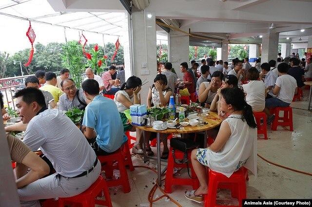Một số người ăn thịt chó che mặt vì không muốn bị chụp hình tại Ngọc Lâm, Trung Quốc.