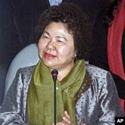 台湾民进党代理主席陈菊