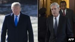도널드 트럼프 미국 대통령과 로버트 뮬러 특별검사.