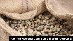 Cajú da Guiné-Bissau