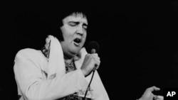На фото: Елвіс Преслі під час виступу у 1977-му році