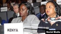 Amina Mohamed, Kenya