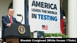 在白宮玫瑰園,美國總統特朗普聽取了一名記者的提問(2020年5月11日)。
