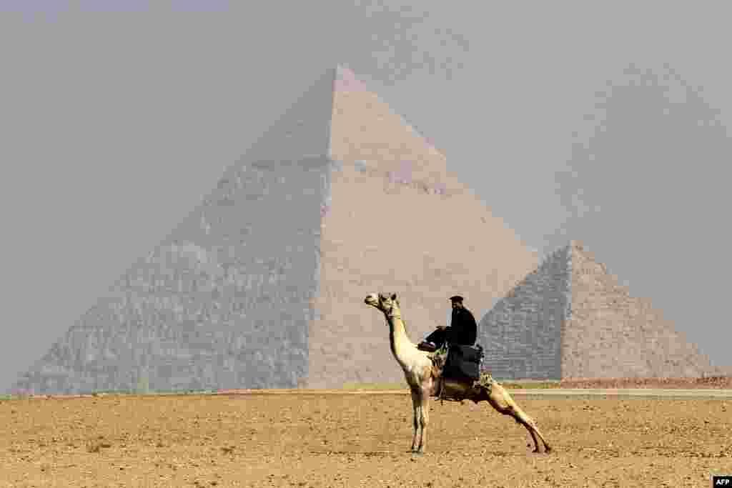 Misirdə Giza ehramlarının önündə dəvənin üzərində gəzən polis zabiti.