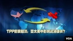 时事大家谈:TPP前景黯淡,亚太地区美中势力此消彼长