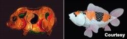 Đèn con lợn Đông Hồ và Đèn con cá Koi (ảnh tư liệu)