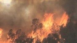 High-Intensity 'Megafires' a New Global Danger