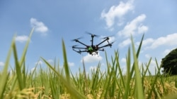 Science Edition: High-Tech Agriculture
